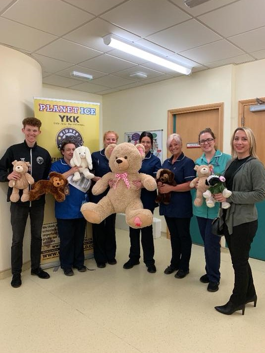 Festive Teddies Bring Christmas Cheer