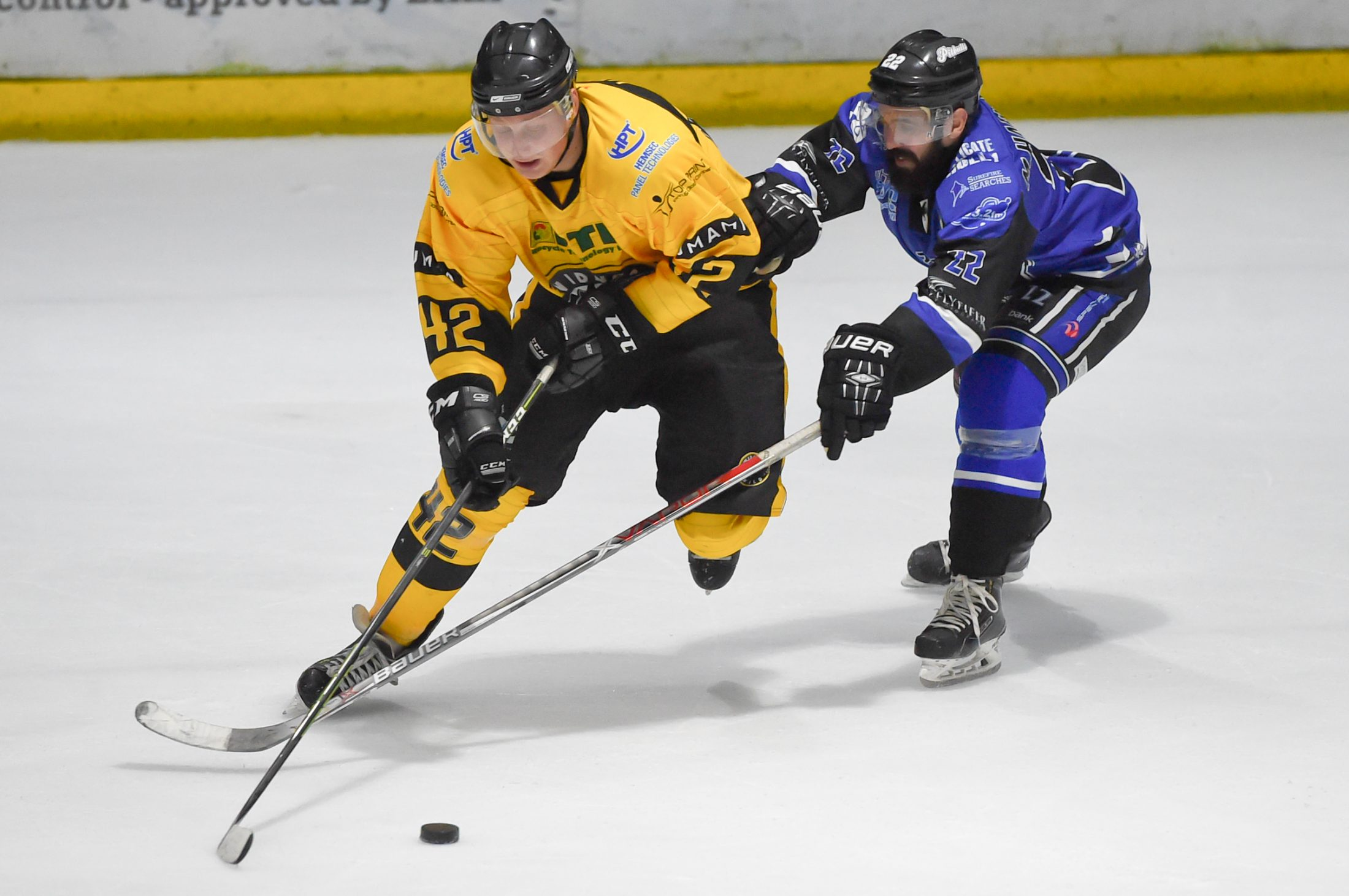 Debut Hat Trick for Elvis as Wild Maul Pitbulls
