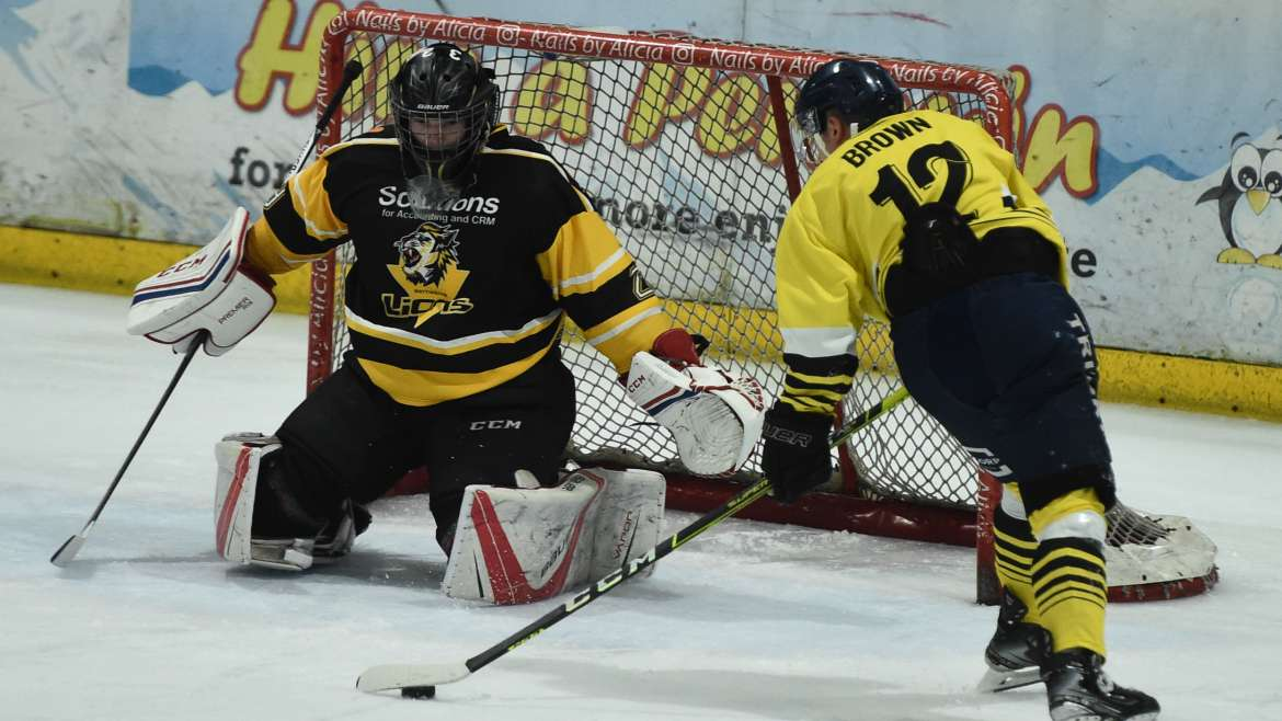 Three Rivers Cup: Wild 8 – Lions 5