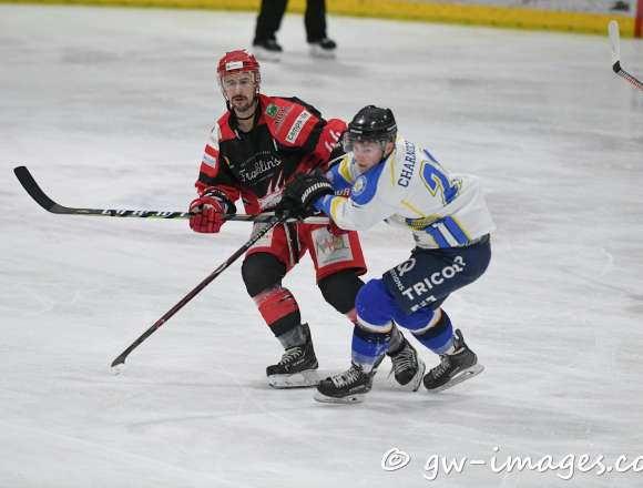 Liam Charnock Signs For The Wild